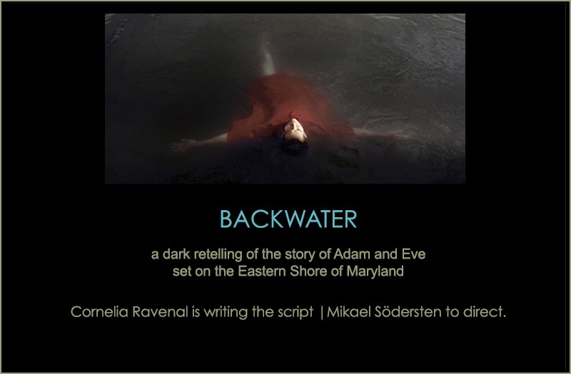 Backwater lightbox